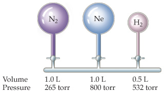 Three gas flasks are connected via stopcocks to the same horizontal tube. N2 (1.0 liter, 265 torr) is on the left, Ne (1.0 liter, 800 torr) is in the middle, and H2 (0.5 liters, 532 torr) is on the right.