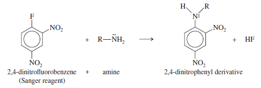 nucleophilic aromatic substitution of 2 4 dinitrochlorobenzene The generally accepted mechanism for nucleophilic aromatic substitution  through nucleophilic displacement reactions starting from 2,4-dinitrochlorobenzene and.