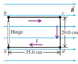 The 20.0 cm by 35.0 cm rectangular circuit shown i