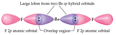In BeF2, two large lobes from two Be sp hybrid orbitals overlap with regions of each F 2p atomic orbital.