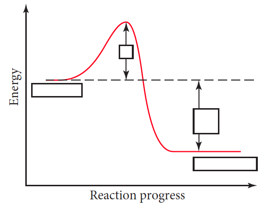 which letter indicates the activation energy of the reverse reaction