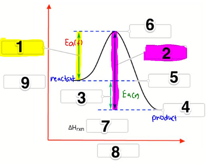 Label the following reaction coordinate di...   Clutch Prep