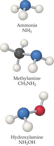 The structure of ammonia (NH3) is an N single bonded to three Hs.  The structure of methylamine (CH3NH2) is a C single bonded to three Hs and N, which is single bonded to two Hs.  The structure of hydroxylamine (NH2OH) is an N single bonded to two Hs and O, which is single bonded to H.