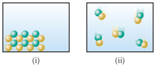 (i) Alternating rows of differently colored stationary spheres. (ii) Compounds consisting of two differently colored bonded spheres in motion.