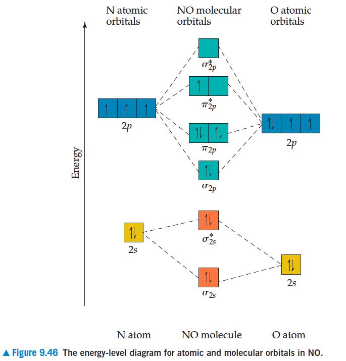Molecular Orbital Diagram Of No.Complete This Molecular Orbital Diagram Fo Clutch Prep