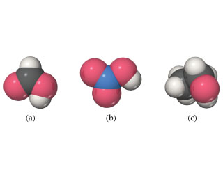 Molecular models show (a) a carbon bonded to oxygen, hydrogen, and OH; (b) a nitrogen bonded to two oxygens and an OH; and (c) a carbon bonded to three hydrogens and another carbon, which is bonded to hydrogens and OH.
