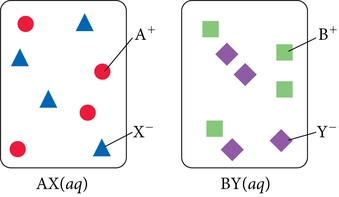 Solution consists of two A+ ions depicted as red circles, two X- ions depicted as blue squares, two B+ ions depicted as green squares, and two Y- ions depicted as purple diamonds.