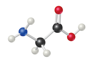 NH2 is single bonded to CH2, which is single bonded to a C that is double bonded above to O and right to OH.