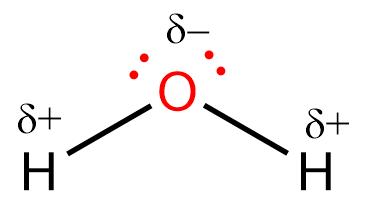 Determine Whether Each Molecule Is Polar O Clutch Prep