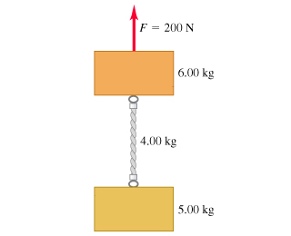 Two blocks are connected by a vertical rope with a mass of 4.00 kilograms. The upper block has a mass of 6.00 kilograms and the lower block has a mass of 5.00 kilograms. The pulling upward force of 200 newtons is applied to the upper block.
