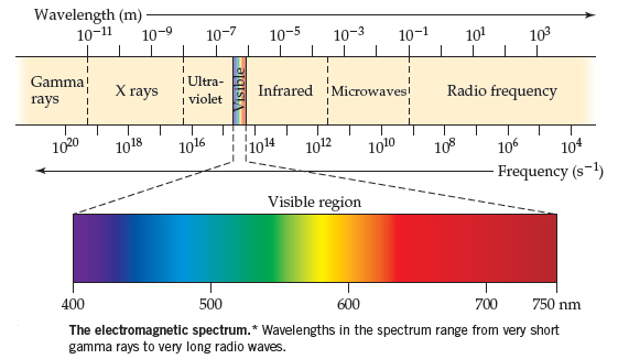 A diagram showing the electromagnetic spectrum, which ranges from low frequency (long wavelengths) to high frequency (short wavelengths).