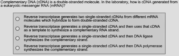 Complementary dna cdna is a double stran clutch prep solution maxwellsz