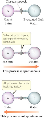 A diagram shows two flasks, connected by a closed stopcock.  Flask A on the left has gas at 1 atmosphere, while flask B on the right is an evacuated flask at 0 atmospheres. When the stopcock opens, the gas expands to occupy both flasks.  Both flasks A and B now have 0.5 atmospheres of pressure; this process is spontaneous. A third diagram shows the stopcock still open, but all gas molecules have moved back into flask A. This process is not spontaneous.