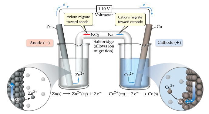 Two beakers are filled with liquid, and are connected by a salt bridge (allows ion migration).  The beaker on the left contains a Zn (solid) electrode (anode, negative) while the beaker on the right contains a Cu (solid) electrode (cathode, positive). The reaction in the left beaker is Zn (solid) goes to Zn2+ (aqueous) plus 2 e-.  The reaction in the right beaker is Cu2+ (aqueous) plus 2 e- goes to Cu (solid).  A voltmeter is connected to both electrodes; electron flow through the voltmeter is from the Zn anode toward the Cu cathode, and registers 1.10 volts.  Through the salt bridge, anions (e.g. NO3-) migrate toward the anode and cations (e.g. Na+) migrate toward the cathode.