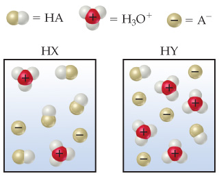 With HX, there are four HA molecules, two H3O+ molecules, and two A- ions present.  With HY, there are two HA molecules, four H3O+ molecules, and four A- ions present.