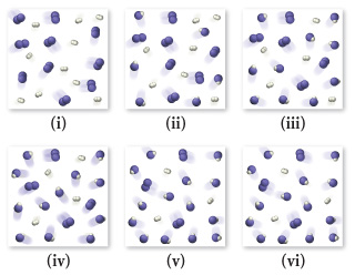 The figure shows 6 sequential states of the reaction. There can be 3 kinds of molecules in the flask. The first consists of 2 purple balls connected together, the second consists of 2 white balls connected together, and the last is a purple and a white ball attached to each other. At picture 1, there are 10 purple and 10 white molecules in the flask. At picture 2, there are 7 purple, 7 white, and 6 purple-white molecules in the flask. At picture 3, there are 5 purple, 5 white, and 10 purple-white molecules in the flask. At picture 4, there are 4 purple, 4 white, and 12 purple-white molecules in the flask. At picture 5, there are 3 purple, 3 white, and 14 purple-white molecules in the flask. At picture 6, there are 3 purple, 3 white, and 14 purple-white molecules in the flask.