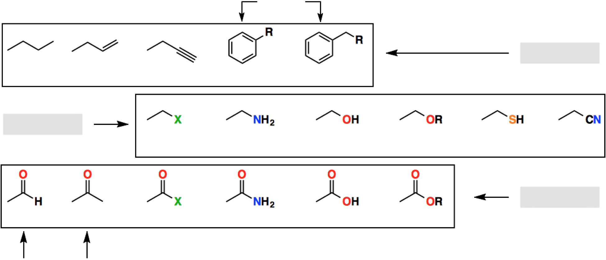 blank-list-of-functional-groups