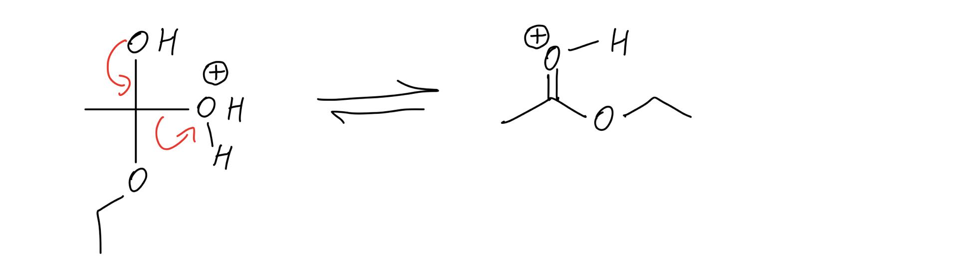 reform-the-carbonyl