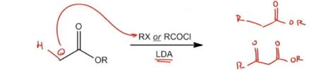 Enolate-alkylation-and-acylation