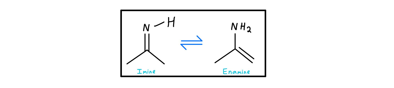 Imine-enamine-tautomerization