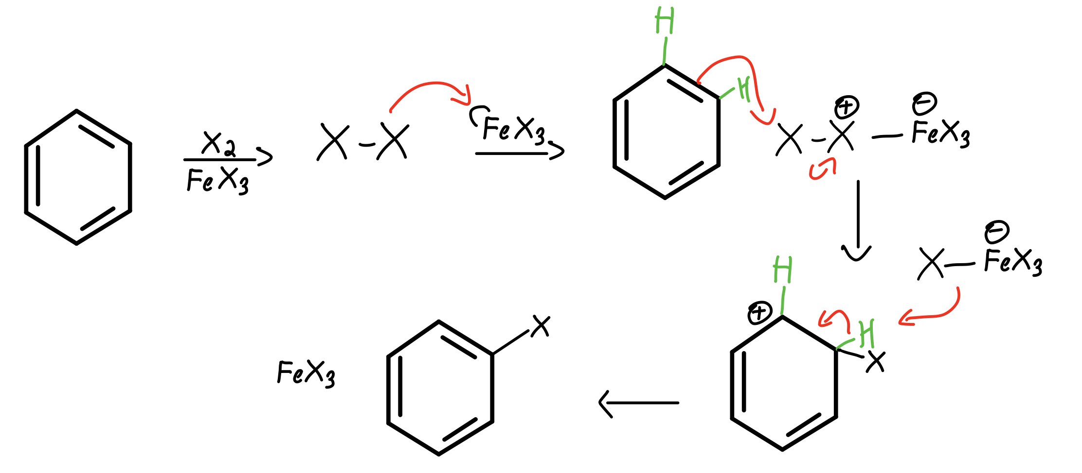 EAS-halogenation-mechanism-using-FeX3