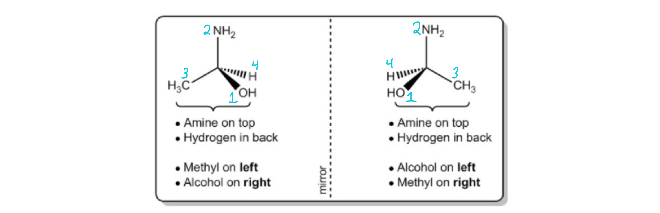 1-aminoethanol-with-labeled-priorities