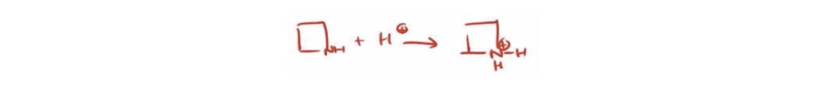 Protonated-Amine