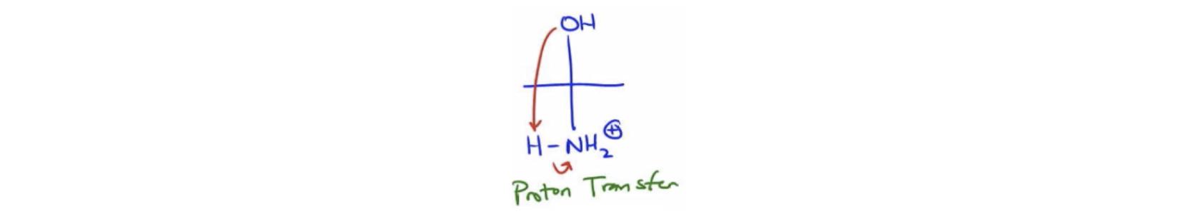 Proton-Transfer-Step