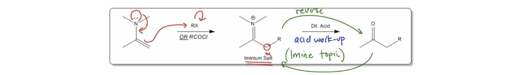 Enamine-Alkylation-&-Hydrolysis