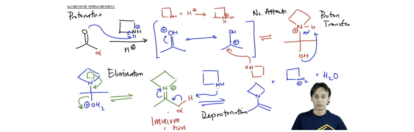 Enamine-Mechanism