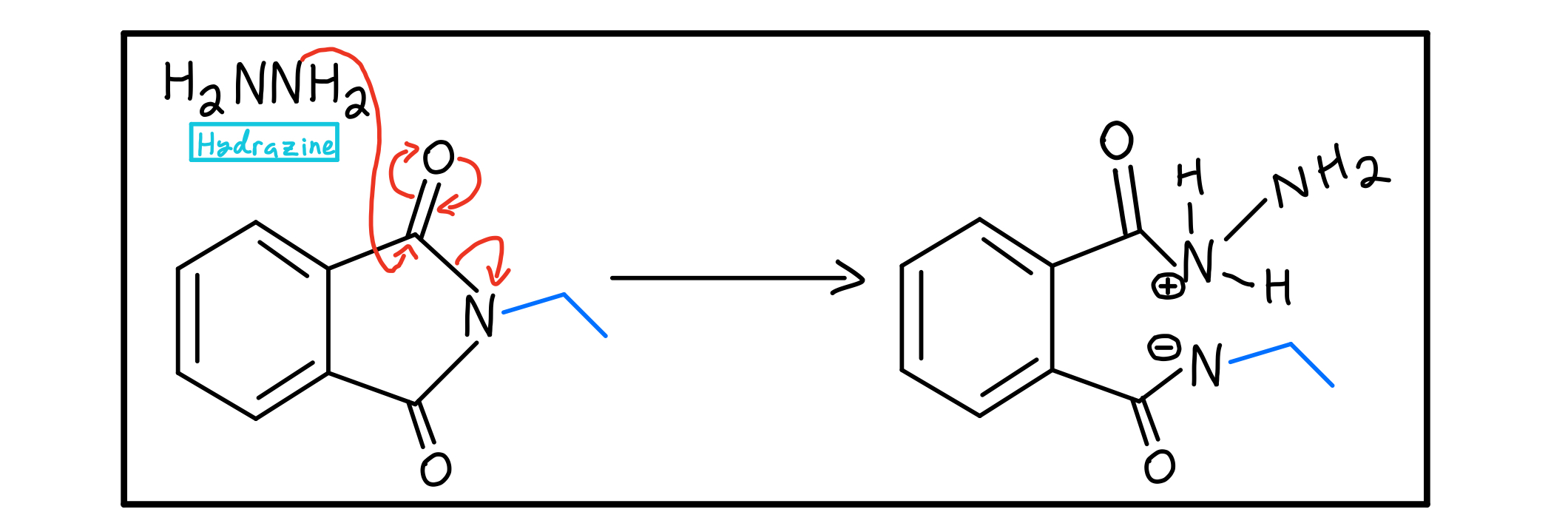 Hydrazine-nucleophilic-acyl-substitution