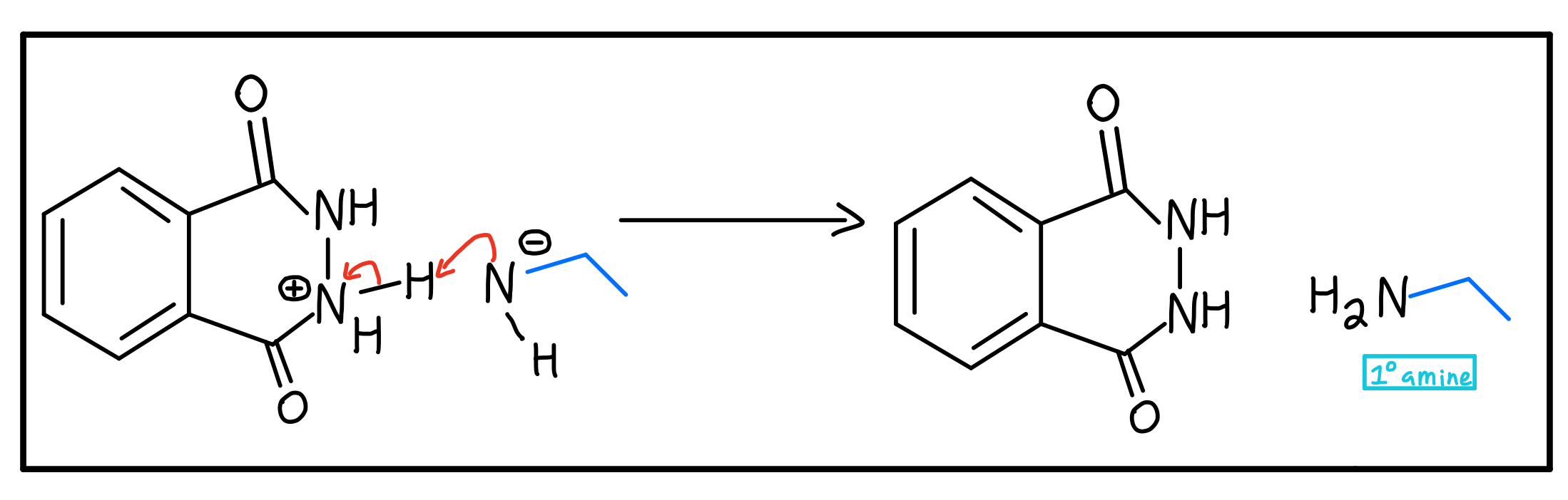 Primary-amine-formation